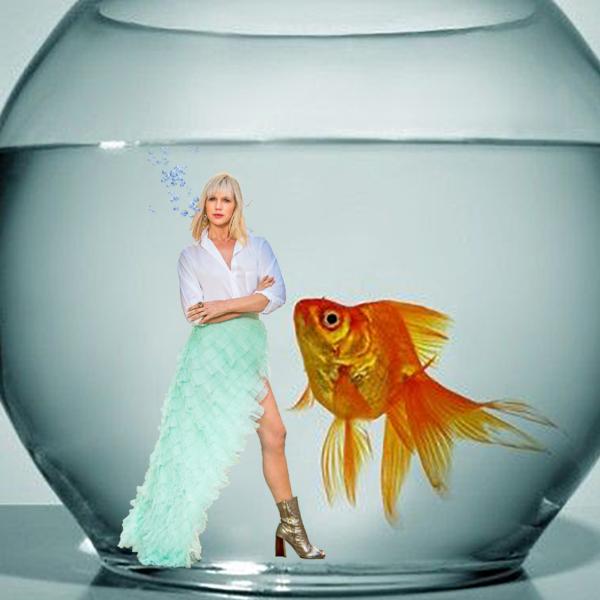 Goldfish Feature